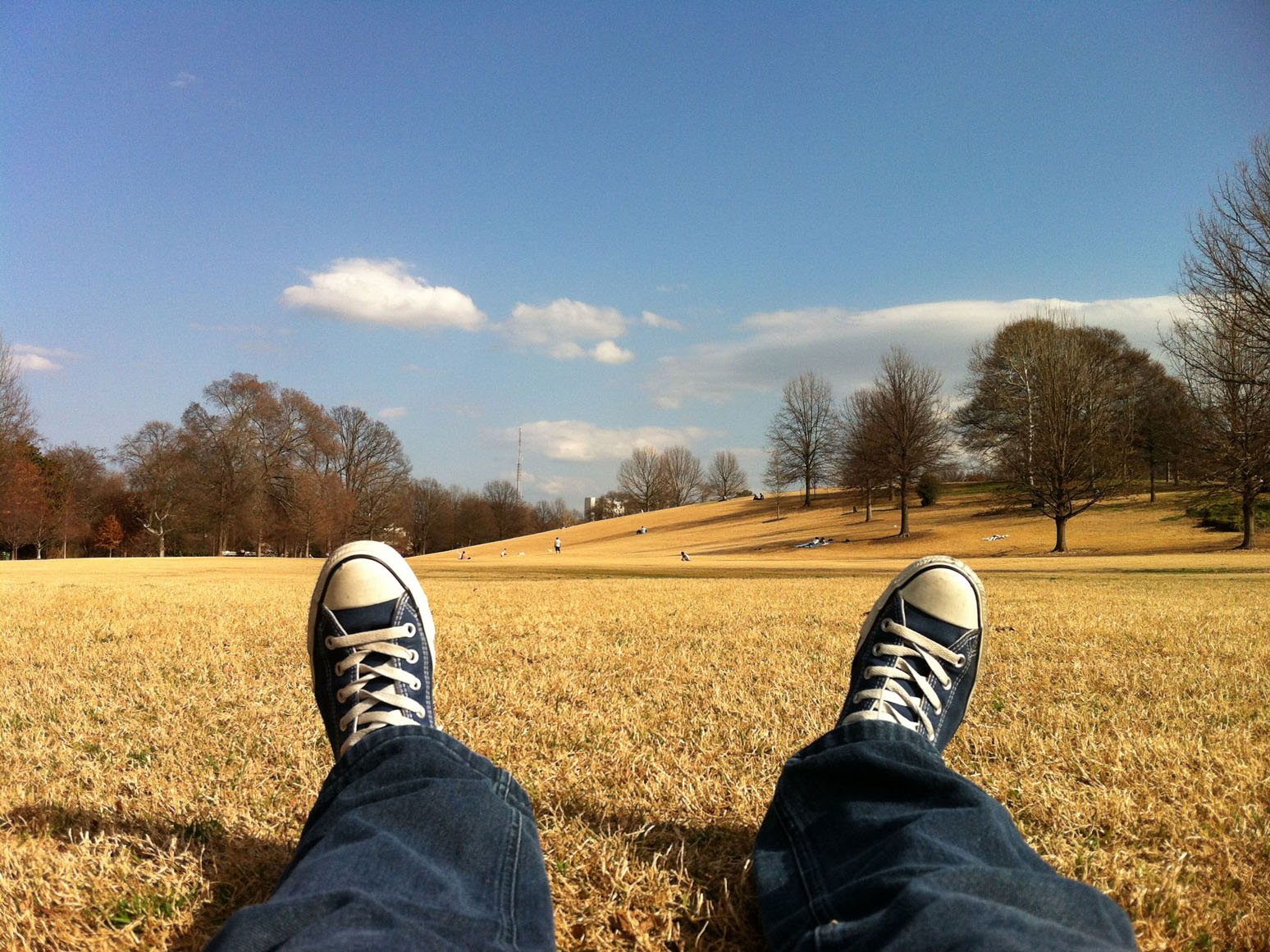 Pause with Alexis - Meditation Blog
